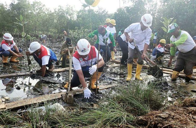 Komitmen Peduli Lingkungan, Pertamina Tanam 5000 Bibit Pohon Mangrove