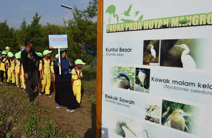 Berkat Pertamina Indramayu Miliki Ekowisata Mangrove