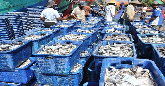 KKP Inginkan Tarif Impor Perikanan Jepang Turun