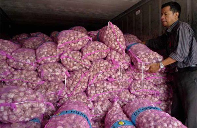 Peringatan Tegas Pemerintah untuk Importir Bawang Putih