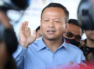 Diduga Lakukan Penyuapan Soal Benih Lobster, Menteri KKP Kena OTT KPK