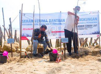 Pertamina GRR Tuban Tanam 20.000 Bibit Cemara Laut