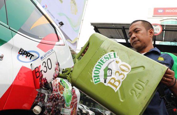 Pemerintah Targetkan Biodiesel Sumbang 35 Persen Bauran EBT di 2021